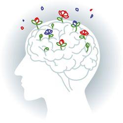 Cabinet libéral ou paramédical - Psychologie - Cabinet de Neuropsychologie Hamelin et Chevassus