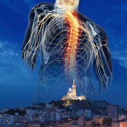 Cabinet libéral ou paramédical - Ostéopathie - Sébastien Roncaglia Ostéopathe Marseille 8 è